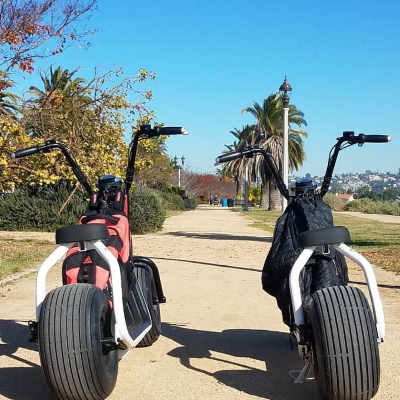 Fat Tire Electric Scooter Rentals