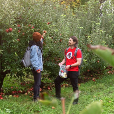 Apple Picking and Cidery Day Trip from NYC