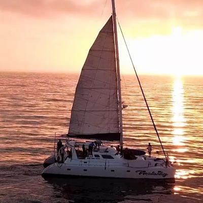 Malarky Private Catamaran Charters
